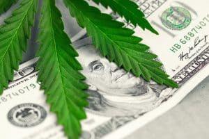 Marijuana Distribution Attorney Ocean County