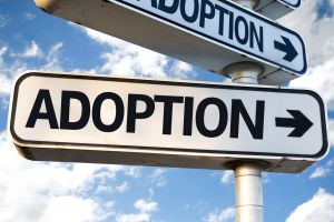 Adoption AttorneyOcean County NJ